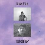 Blank Realm Grassed Inn