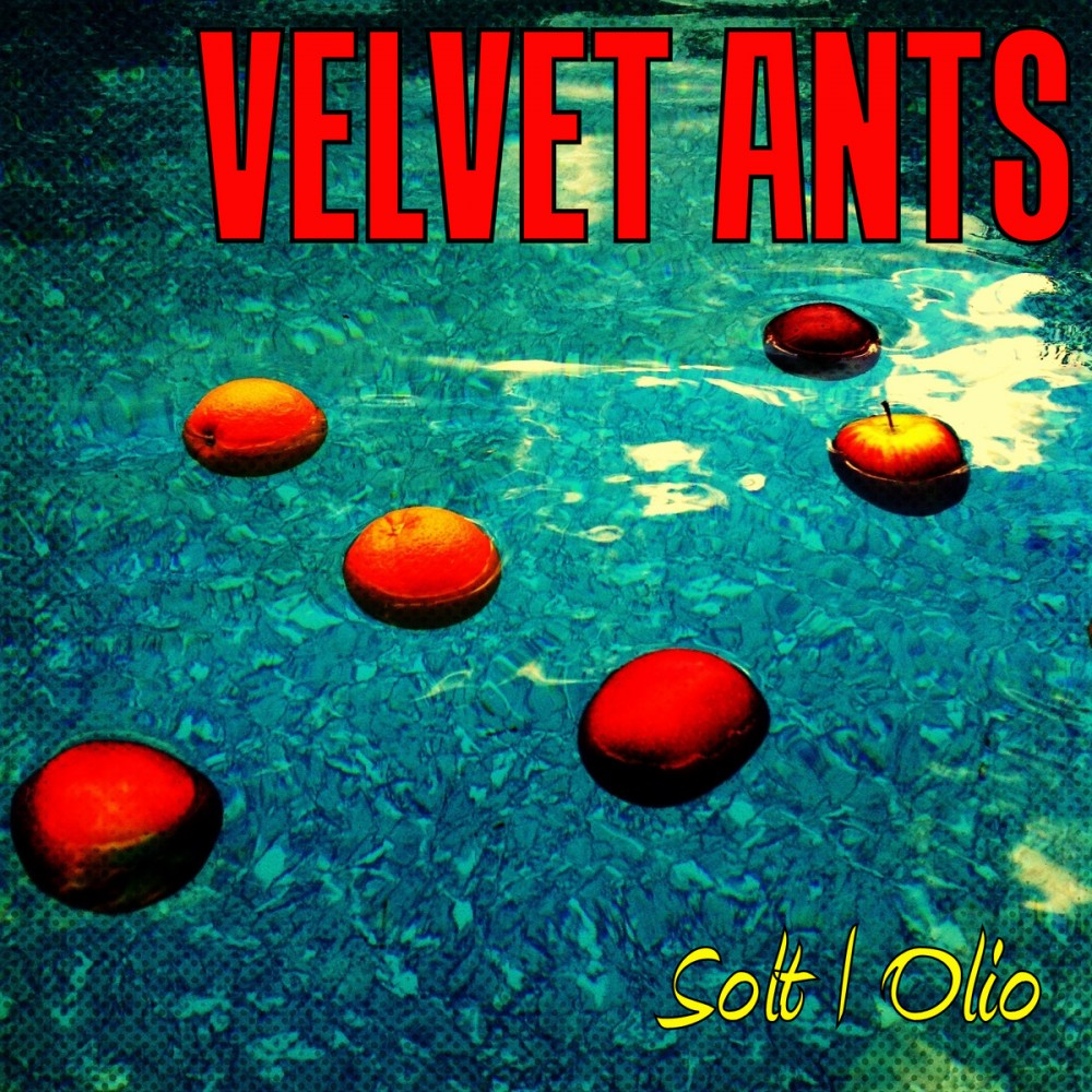 "UnChained Reviews: ""Solt Olio"" by The Velvet Ants"