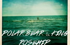 "Polar Bear & King – ""Rosehip"""