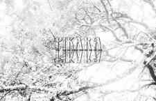 Video: Pikara – 'This Hollow'