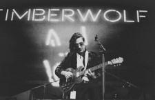 """Timberwolf – """"Fallen Sun"""""""