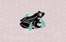 Hidden Gem – Frog