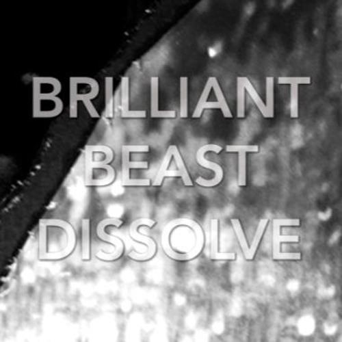 Brilliant Beast - Like Dreaming