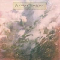Day Wave - Headcase
