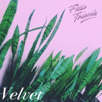 Fickle Friends - Velvet