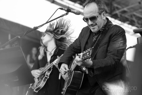 Elvis Costello and Larkin Poe