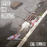 hey-bulldog-divide-and-conquer