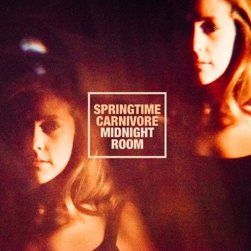 springtime-carnivore-midnight-room